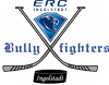 BULLYFIGHTERS INGOLSTADT